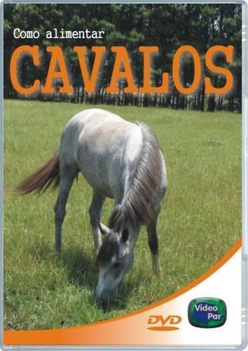 Como Alimentar Cavalos