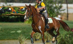 Brasil vai receber 232 cavalos de outros países para as Olimpíadas