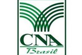 CNA_logo001(G)